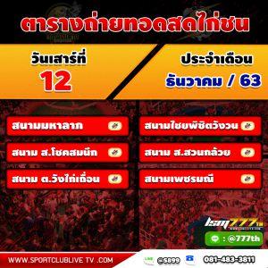 โปรแกรมถ่ายทอดสดจากทีมงานไก่ชนเงินล้าน วันเสาร์ที่ 12 ธันวาคม 2563